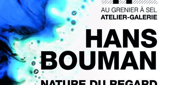 Nature du regard de Hans Bouman